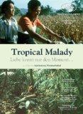 Weerasethakul, Apichatpong - Tropical Malady bestellen