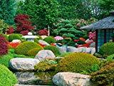Knoflach, Ralf - Garden Design Review bestellen